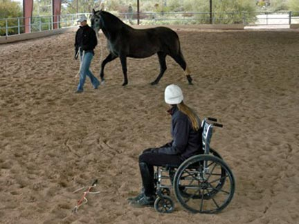 Barbara being led in covered arena, woman sits in wheelchair
