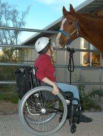 horsesCliffy002