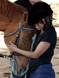 horsesCliffy004