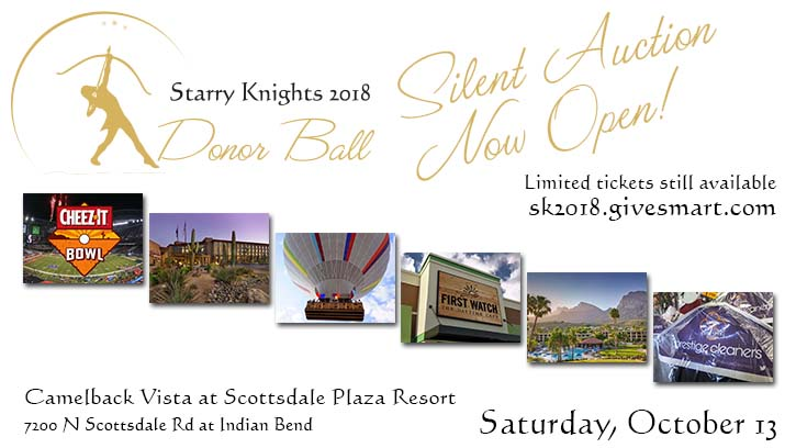 Starry Knights silent auction now open