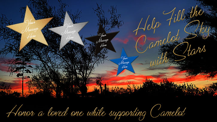 Help fill the Camelot sky with stars