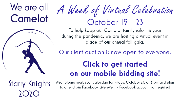 Silent auction is now open - click to get started bidding